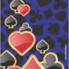 Jack Parrot CardS030 for Samsung Note Samsung Note Mobile Skin