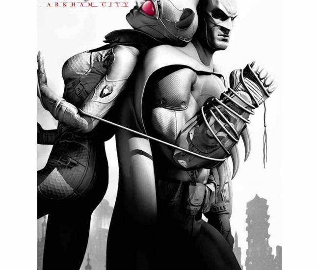 Da Vinci Posters Batman Arkham City 24x36 Inch Large Poster