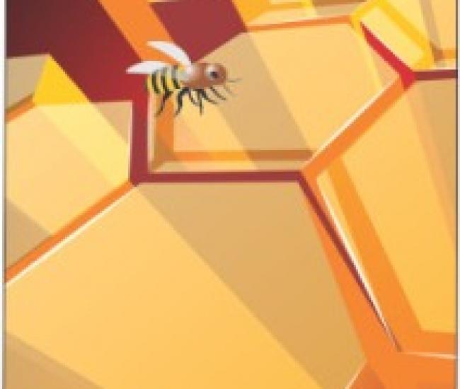 Jack Parrot Bee 029 for Samsung Note 2 N 7100 Samsung Note 2 N 7100 Mobile Skin