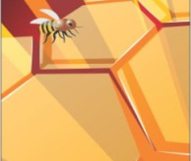 Jack Parrot Bee 029 for Sony Xperia Z1 Sony Xperia Z 1 Mobile Skin