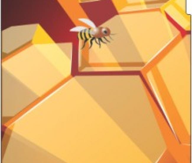 Jack Parrot Bee 029 for Vayoki M35 Vayoki M-35 Mobile Skin