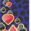 Jack Parrot CardS030 for Samsung Grand i9080 9082Flap Samsung Grand i9080 Mobile Skin