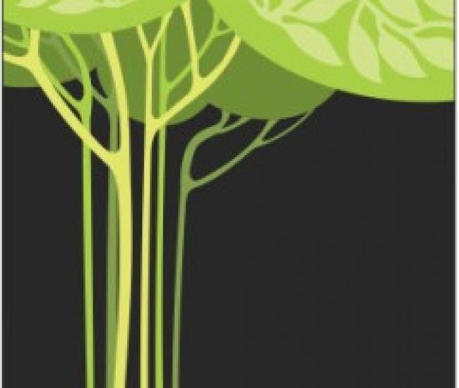 Jack Parrot Flora 007 For Karbon A6 Karbon A6 Mobile Skin